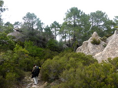 Le sentier sur la crête de Renosu