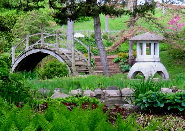 Japanese Garden DETAIL HDR 06-20160506