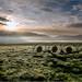 Sibillini - sorge il sole sul Pian Grande by Luigi Alesi