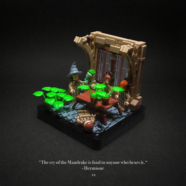 012 - Mandrakes