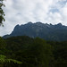 Kinabalu National Park, Borneo