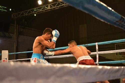 Autor: World Series Boxing