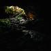 Ape Caves Entrance by FullFramePhotographs