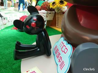 CIRCLEG 等埋我先玩喎 回歸原點 繪圖 新都城 MCP 小熊 東港城 海洋公園 樹熊 袋鼠 貓CAFE 南灣 玩在棋中 BOARDGAME 香香雞 (2)