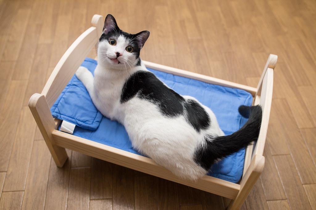 IKEAのドールベッドがやってきた