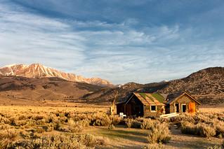 Abandoned Cabin and Mount Dana, Mono County, CA