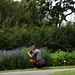 <p>Botanic Gardens Glasnevin Dublin</p>