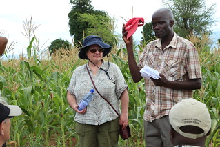 Sieg Snapp and Blessing Kadzimbuka (Photo credit: IITA / Jonathan Odhong').