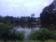 Bobe Lake