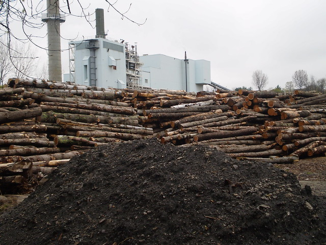 photo of biomass power facility