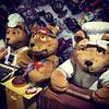 Casa dos ursos #ursos #ursinho #serranegra #saopaulo