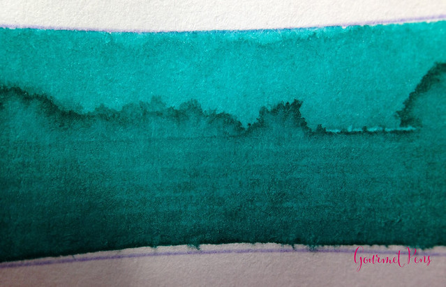 Ink Shot Review Diamine Marine @CouronneDuComte (3)