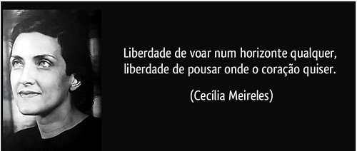 frase-liberdade-de-voar-num-horizonte-qualquer-liberdade-de-pousar-onde-o-coracao-quiser-cecilia-meireles-97012