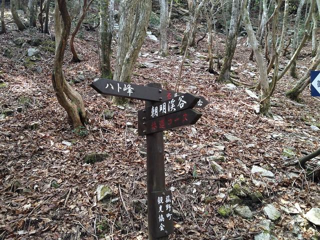 県境稜線縦走路 朝明渓谷 林道コース分岐