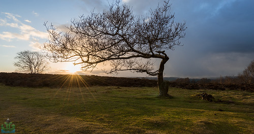 sunset snow derbyshire peakdistrict summit peaks storms leaningtree stantonmoor