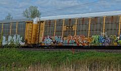 TTGX 158804