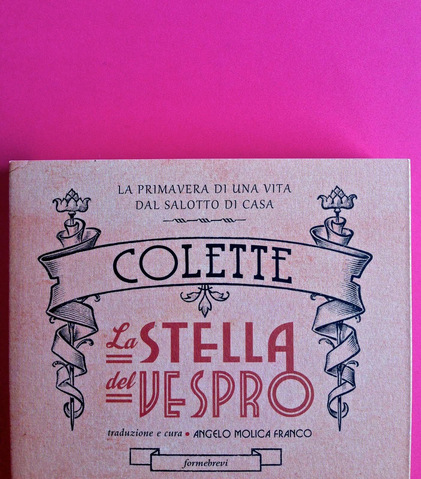 La stella del vespro, di Colette. Del Vecchio Editore 2015. Art direction, cover, illustrazioni, logo design: IFIX | Maurizio Ceccato. Copertina (part.), 4