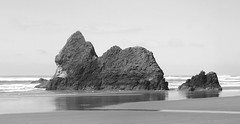 Arcadia Beach 1 BW