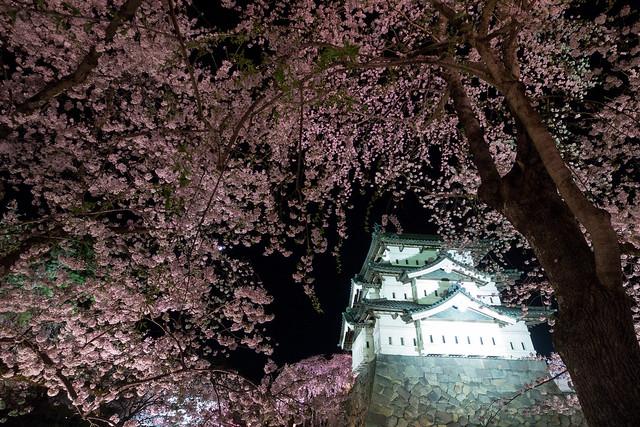 Hirosaki night 3