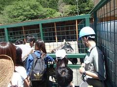 東伊豆 熱烈動物園 - naniyuutorimannen - 您说什么!