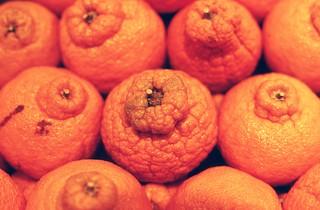 Day 060 - Oranges