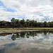 Angkor Wat reflejo 2