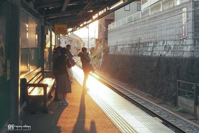 PEN F x Tokyo | 18