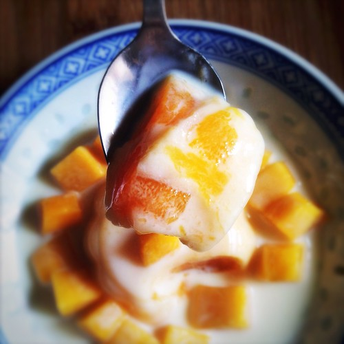 chinese, classic, dim sum, hong kong, Mango Pudding  recipe, Style, traditional, 芒果布甸, 香港, dessert, fruit, mango