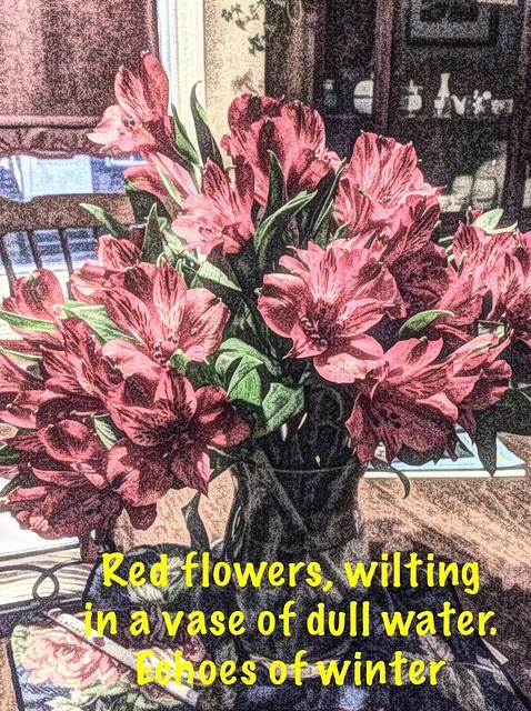 Flower haiku