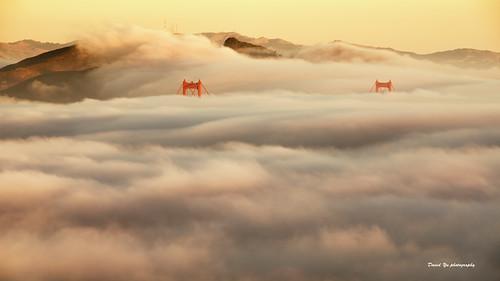 Morning Fog - Marin Headlands