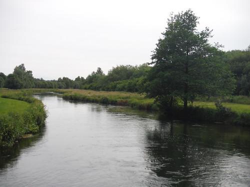 Park Stream arm of Test River, Lower Brook