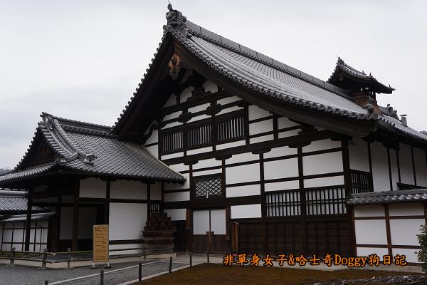 日本京都金閣寺11