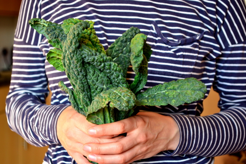 What Is Cavolo Nero Cabbage