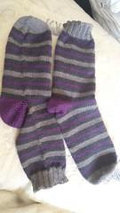 17th of Shark socks of mercy