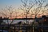 High Line 4/21/15