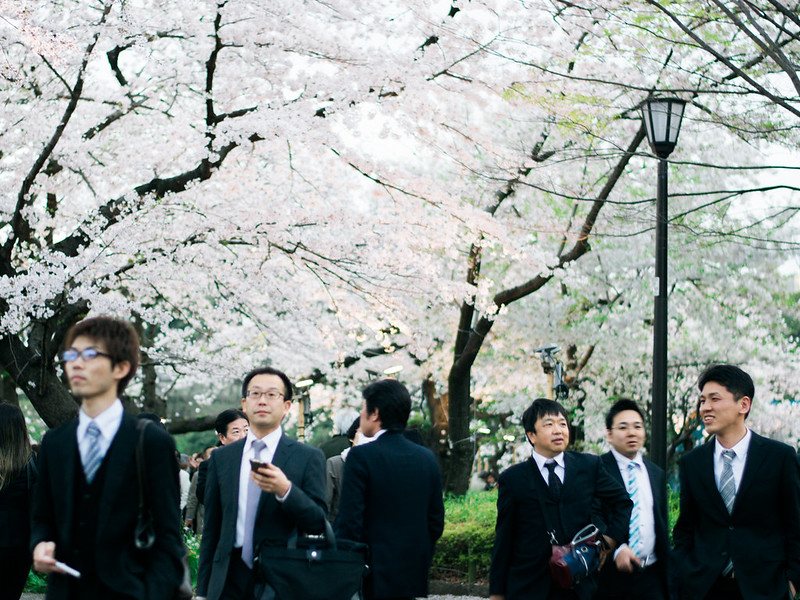 Salarymen de-stressing under the cherry blossoms.
