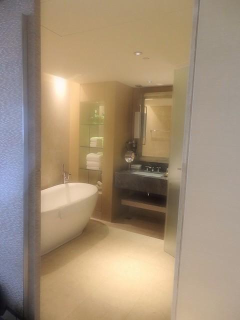 P4170342 Marina Bay Sands Hotel(マリーナ・ベイ・サンズ・ホテル)