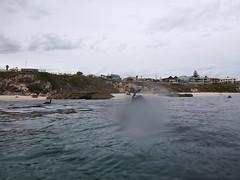 Bennion Beach snorkeling