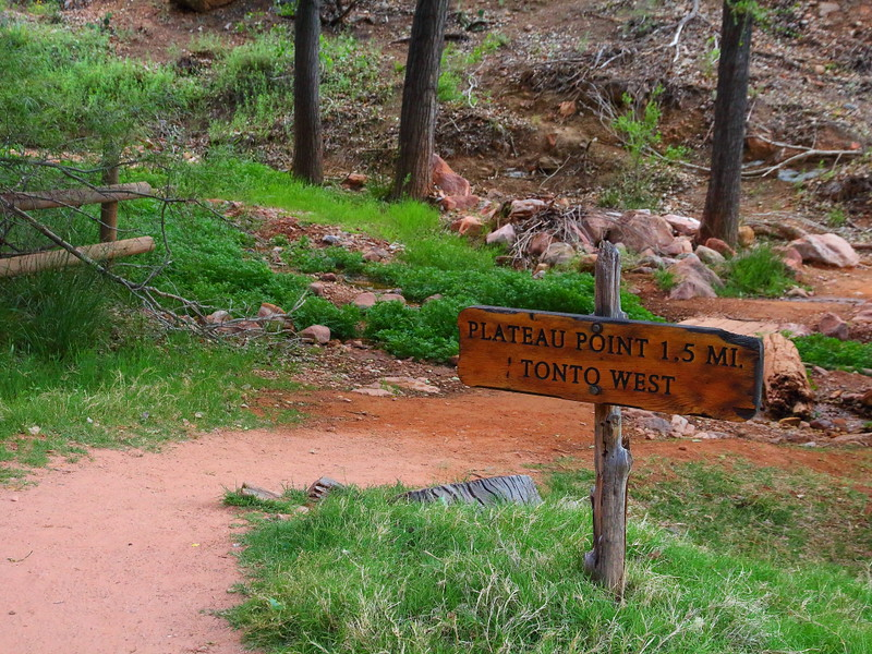 IMG_5805 Plateau Point Trail