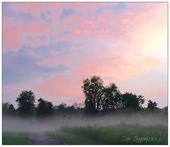 Sunset with mist over the meadow