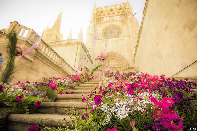 Feria de las Flores (Burgos)