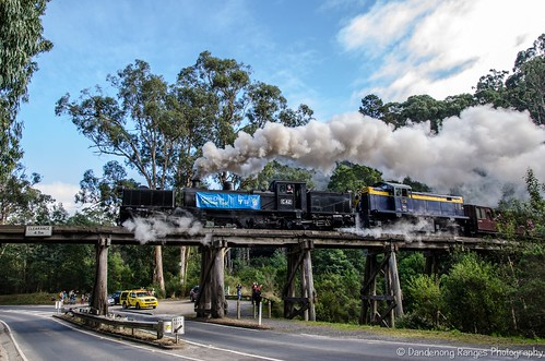 Puffing Billy Race 2015