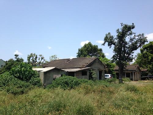 曾經是集合優秀空軍軍官的飛雁新村,為了掩護房舍以及偵訊設備,廣植樹木當掩體,如今一場都更,移植了林木,依稀留下房舍模糊輪廓。