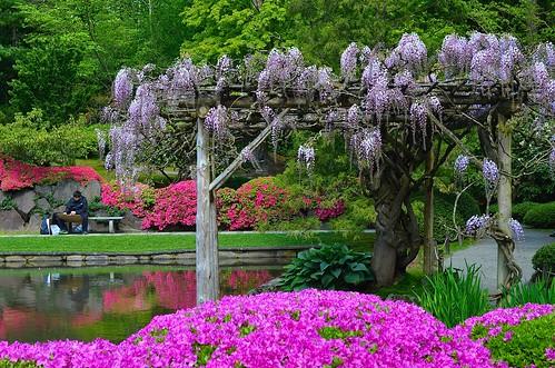 Plein Air-Seattle Japanese Garden