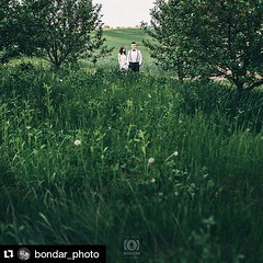 #Repost @bondar_photo ・・・ #weddingphoto #nature #sky #sun #summer #beautiful #pretty #sunset #sunrise #blue #flowers #tree #twilight #clouds #beauty #light #cloudporn #photooftheday #love #green #skylovers #dusk #weather #day #weddingphotographer #inlove