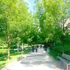 Morning jog! #PARIS #parcmartinlutherking #Batignolles #healthylife