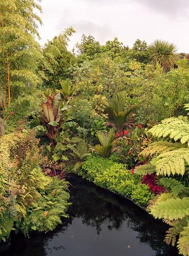 Hamilton Gardens - Tropical Garden