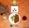 Seara (sea rabbit).  Photograph by Dr. Takeshi Yamada. 20120612 009 Japanese Beef Curry Rice. Chocolates. Black Tea