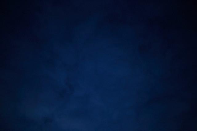 Blue Collar 40