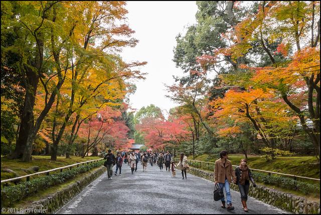 Entering Kinkakuji
